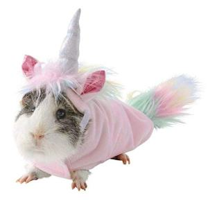 7 Clever Halloween Costumes for your Guinea Pig