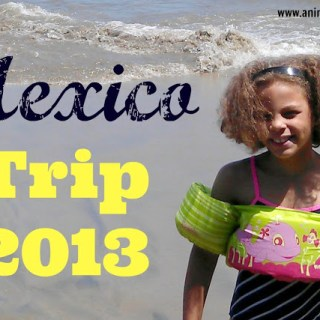 Q & A With Our Oldest Daughter About Mexico!