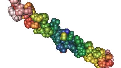 Photo of طرق زيادة الكولاجين في الجسم طبيعيًا