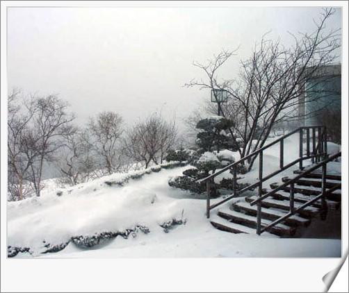 95.1.19 北海道冰凍餵豬泡湯之旅(11)–喵低!!好大的風雪啊!! @愛吃鬼芸芸