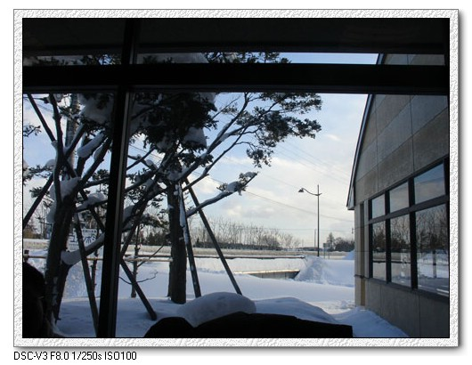 95.1.20 北海道冰凍餵豬泡湯之旅(17)–荒狗路+參觀SAPPORO啤酒廠 @愛吃鬼芸芸