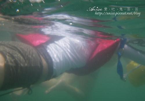 2011泳渡日月潭033.jpg