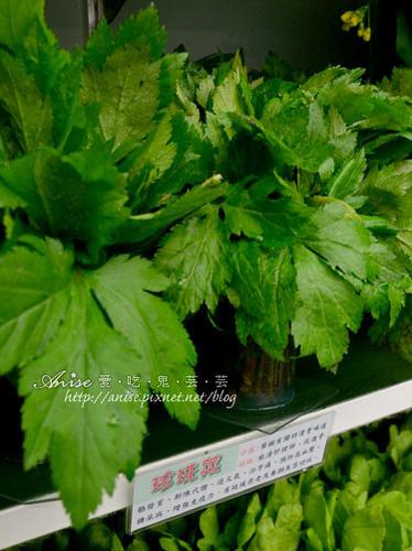 辣滷哇蔬菜森林025.jpg