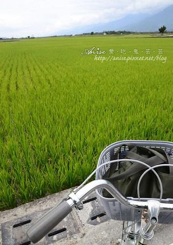日暉02-041.jpg