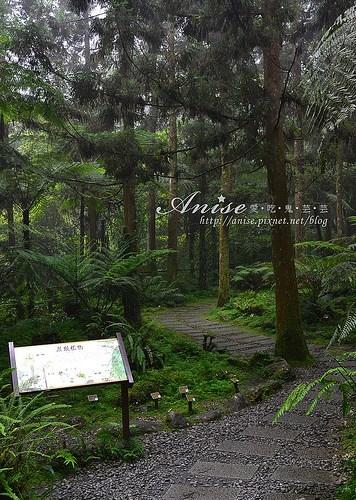 福山植物園_028.jpg