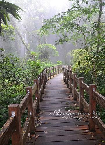 福山植物園_043.jpg
