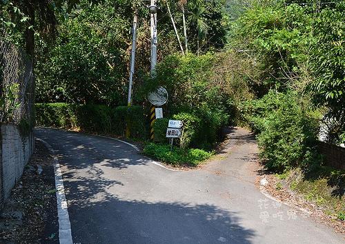 梯田山_001.jpg