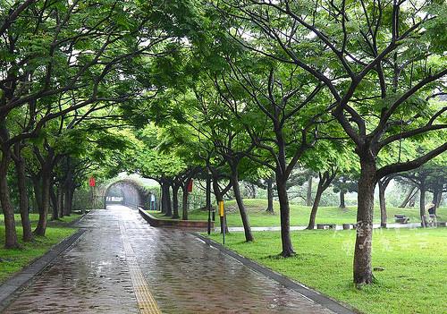 大溪埔頂公園_008.jpg