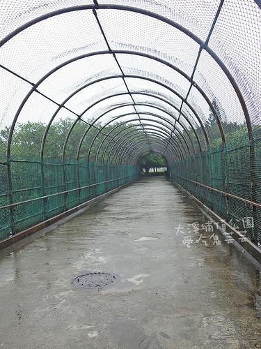 大溪埔頂公園_009.jpg