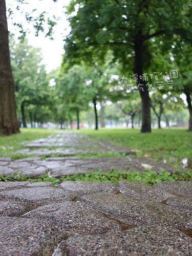 大溪埔頂公園_018.jpg