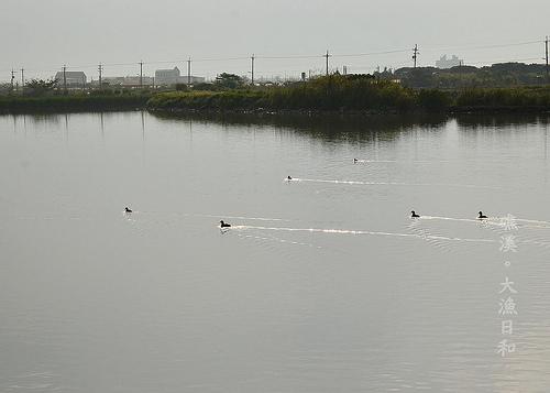 大漁日和2_034.jpg