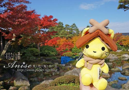 島根旅遊.由志園,美麗的日式庭園