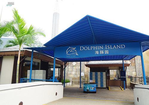 聖淘沙名勝世界:海豚園,海豚互動體驗也太可愛了吧!