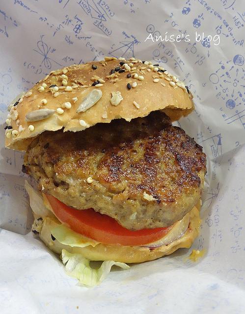 burger lab016