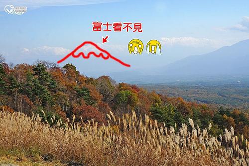 富士見高原渡假村(搭乘遊園車欣賞紅葉・富士山),可是我們富士看不見(哭哭) @愛吃鬼芸芸