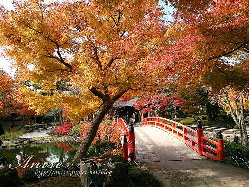 島根旅遊.由志園,美麗的日式庭園 @愛吃鬼芸芸
