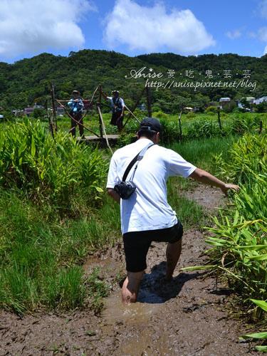 牡丹199人文生態走廊之旅~東源溼地水上草原,超刺激的草上飛! @愛吃鬼芸芸