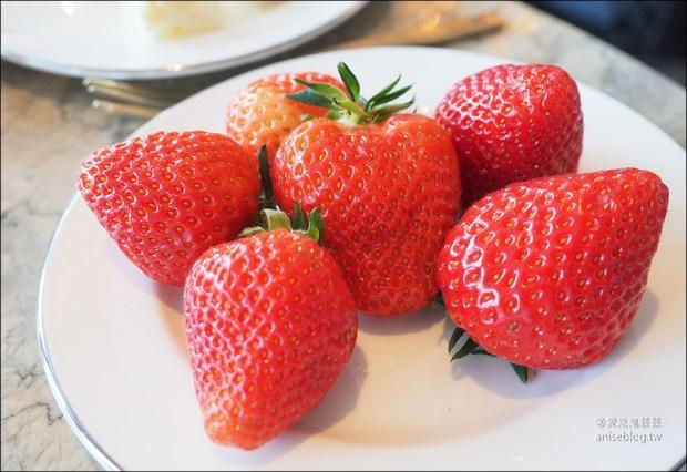 首爾草莓吃到飽   東大門萬豪酒店 The Lounge草莓甜點專賣店