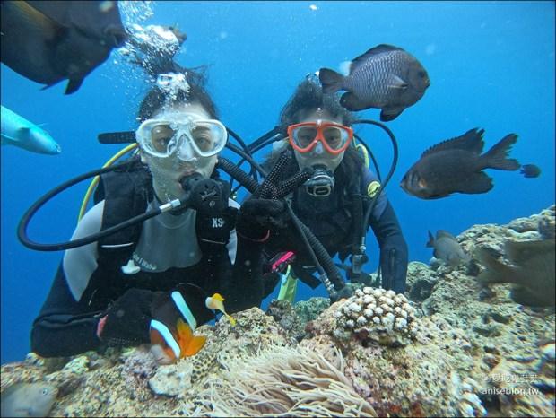沖繩青之洞窟潛水My Diving,怕水的妹子也挑戰成功啦! @愛吃鬼芸芸
