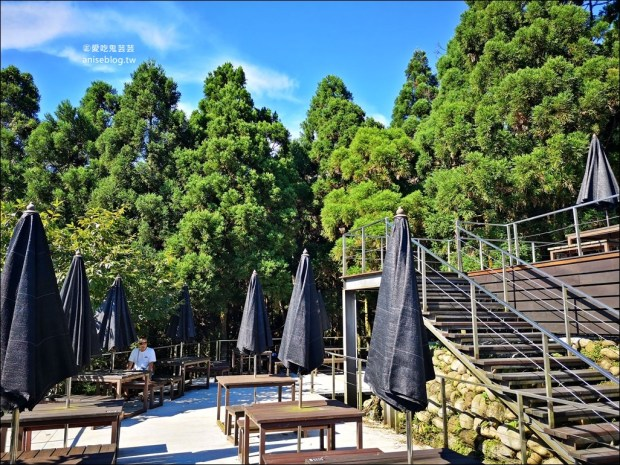 三峽熊空茶園,走一趟台北秘境森林下午茶吧!(姊姊遊記)