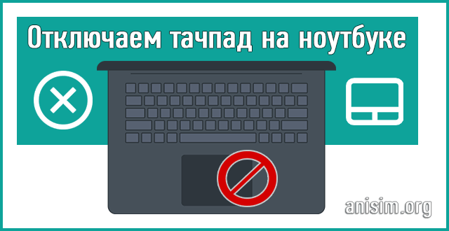 How to disconnect the touchpad on the laptop: in detail