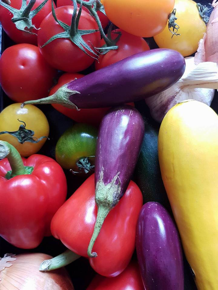 Mediterranean Vegetables