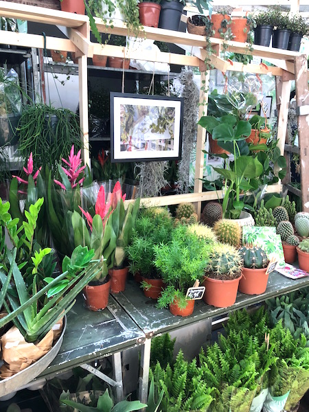 planten op de vtwonen&designbeurs