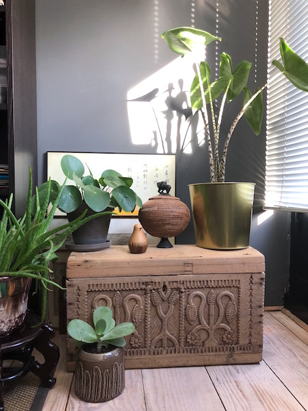 urban jungle -home office