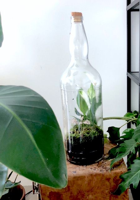 bottle graden grote fles