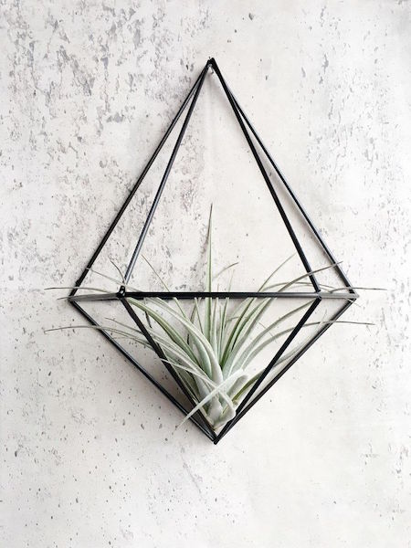 158839_DIY_WallPlanter_DIAMOND_carbon_2_Kopie_234