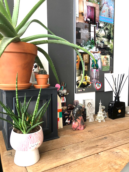 planten in home office