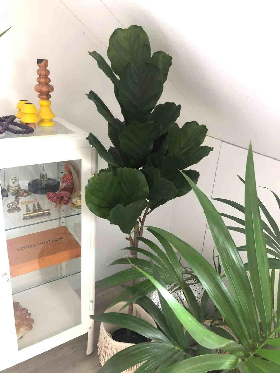 Combinatie van fake & echte planten