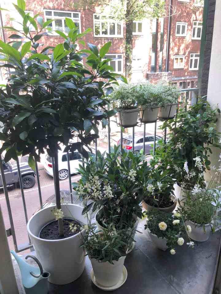 wonen op 55 m2-mini balkon
