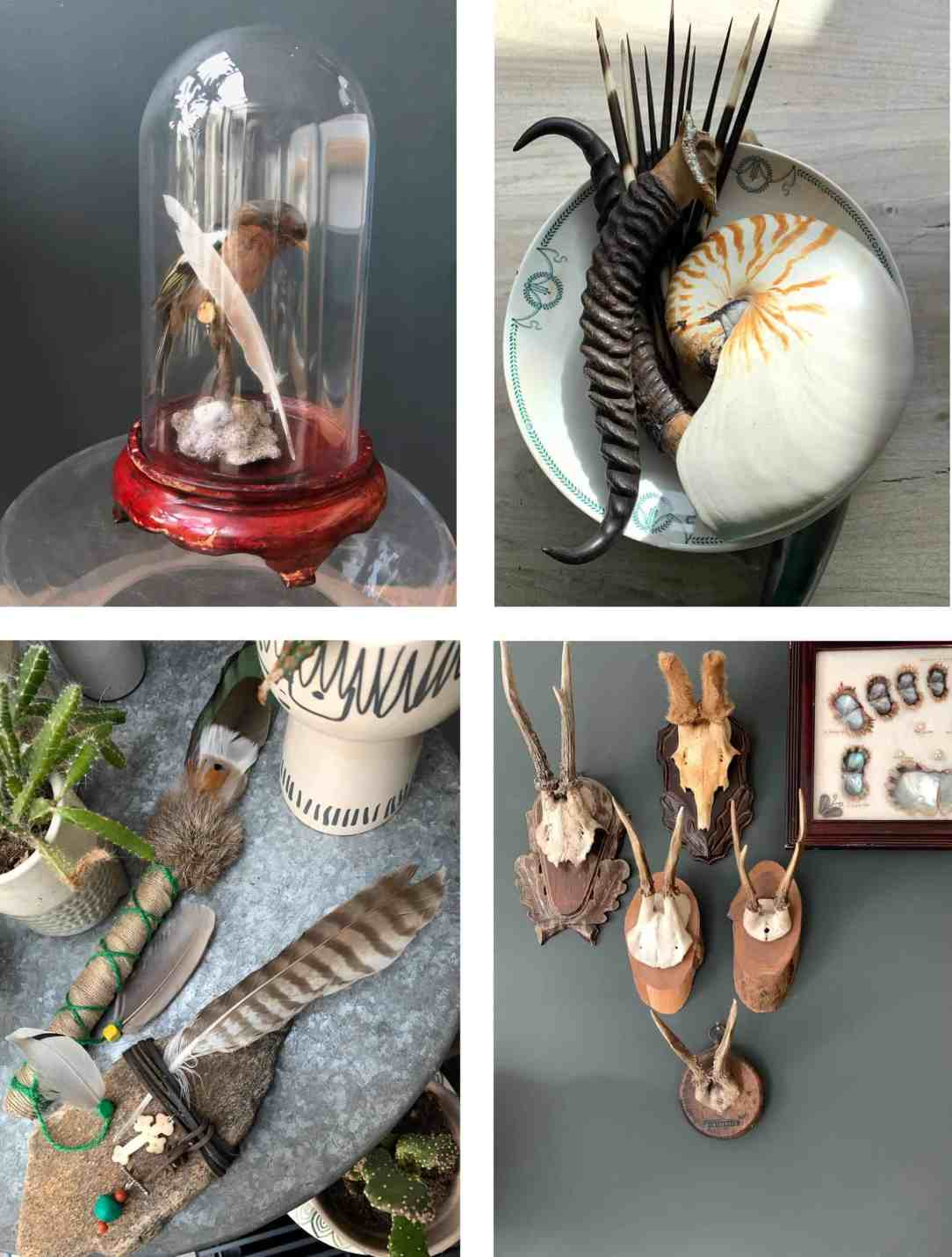 collage-collectie
