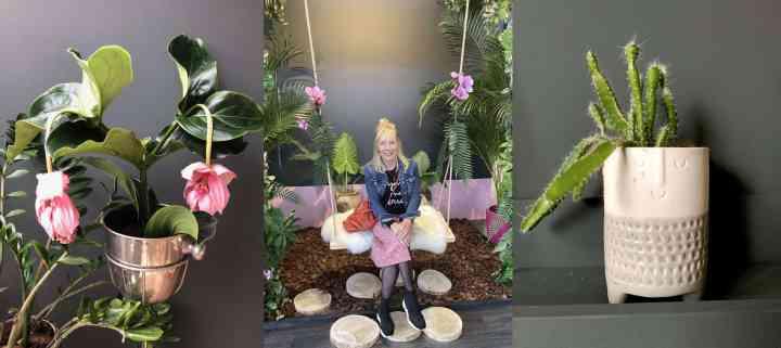 Welke bloempot moet je kiezen? Mijn leukste ideeën & inspiratie!
