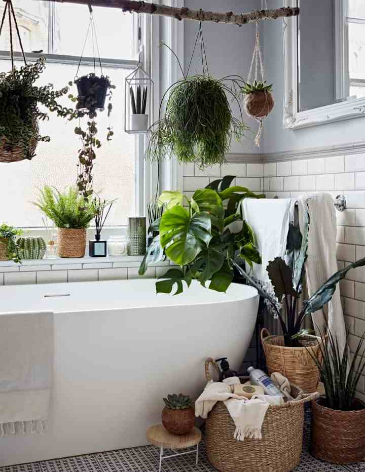 DobbiesA-Place-for-Plants-and-Plants-in-Their-Place-4