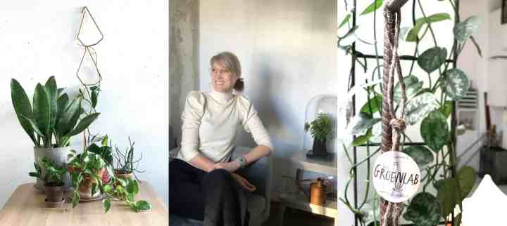 Huis vol planten: binnenkijken bij plantenarchitect Judith