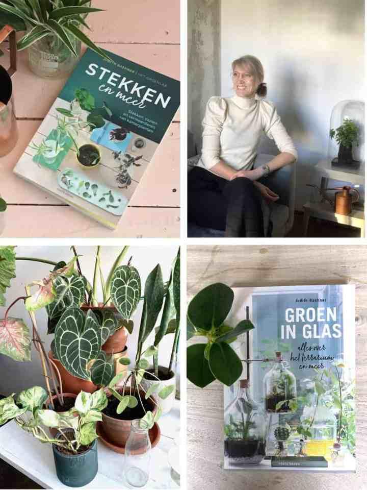 Het Groenlab- Judith Baehner