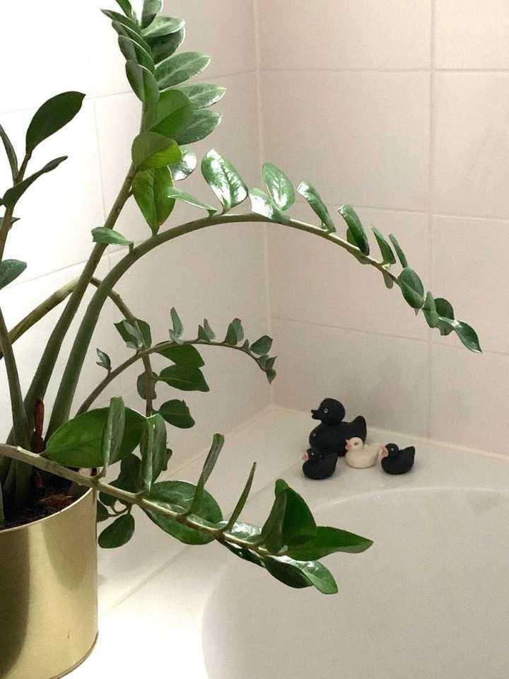 badkamer in mijn nieuwe huis