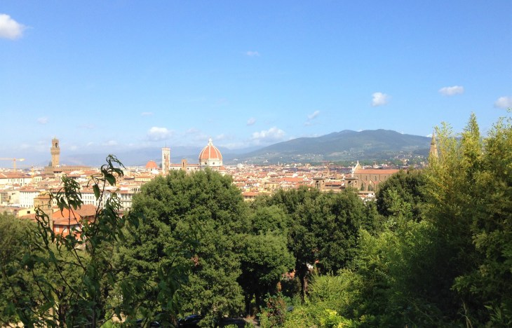 florence panorama from rose garden