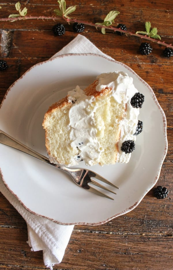 Homemade angel food cake homemade angel food cake an easy delicious made from scratch cake recipe best with forumfinder Image collections