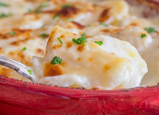 close up of a spoon of simple scalloped potatoes