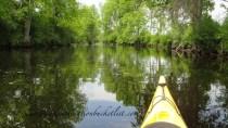Kayaking in Perth, Ontario