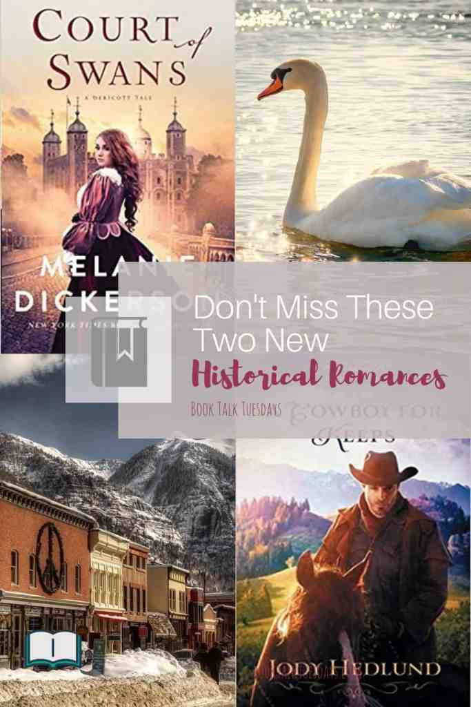 Looking for a clean historical romance to curl up with on a cold winter night? Check out these two books from my favorite authors! #inspy #historicalromance #action #oldwest #medievalengland #colorado #amreading #bookreview