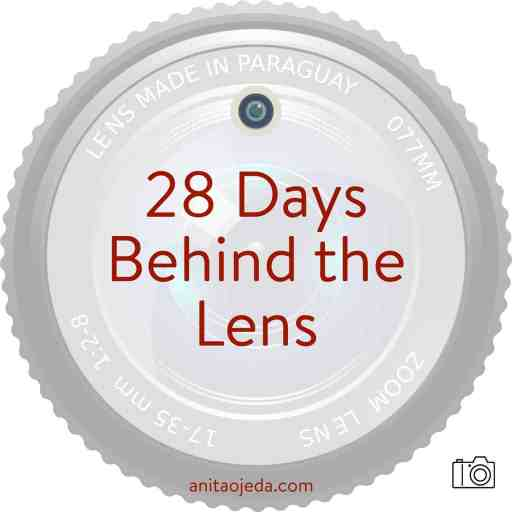 Ever feel that sinking disappointment when you look at your photos and discover not a single one turned out like you imagined it would? Me, too. Join me in this 28-day series on lessons I've learned behind the lens. #naturephotography #photography #aperture #blogger #instagrammer #creative #improveyourphotos #camera #DSLR