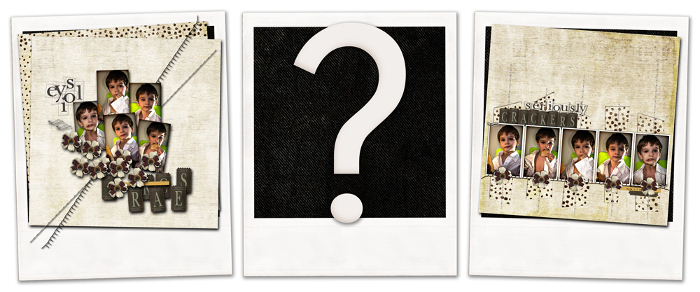 Anita Richards Designs   Digiscrap 1010   What is Digital Scrapbooking?