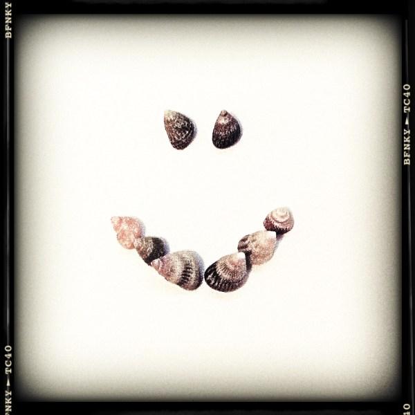 Smile Again: Day 44 Seashells on Plain Paper