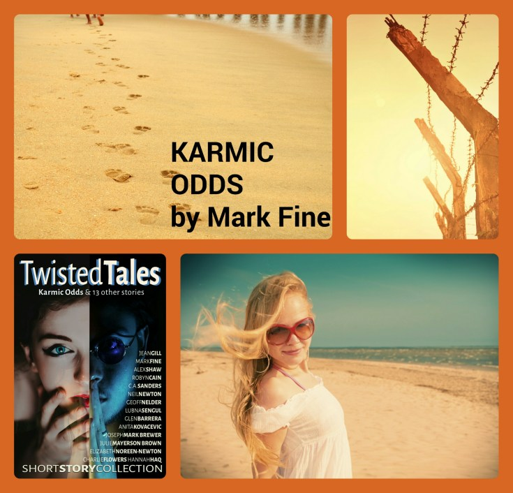 Mark Fine short story, Karmic Odds