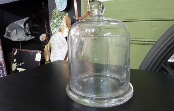 Glass dome cloche