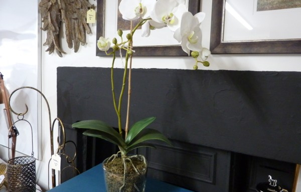 """White faux orchid with moss 25"""" tall"""